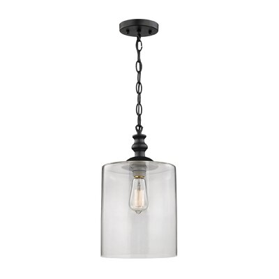 Bergen 1-Light Mini Pendant