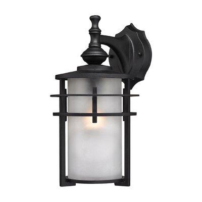 Meadowview 1-Light Outdoor Wall Lantern Size: 13 H x 7 W x 7 D