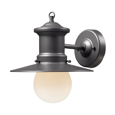 Vuelta 1-Light Outdoor Barn Light