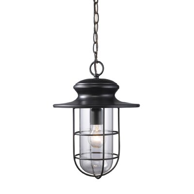 Portside 1-Light Outdoor Pendant