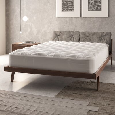 Sogno Doro Ultra Loft Mattress Pad Size: Queen