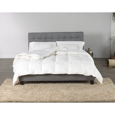 Midweight Down Comforter Size: Twin