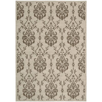 Opus Sandstone Area Rug Rug Size: 36 x 56