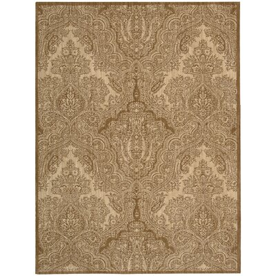 Majestic Buff Area Rug Rug Size: Rectangle 36 x 56