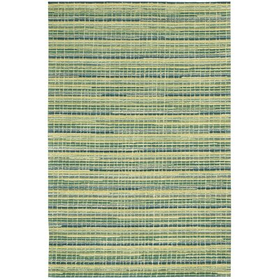 Robins Hand-Woven Green Area Rug Rug Size: Rectangle 5 x 76