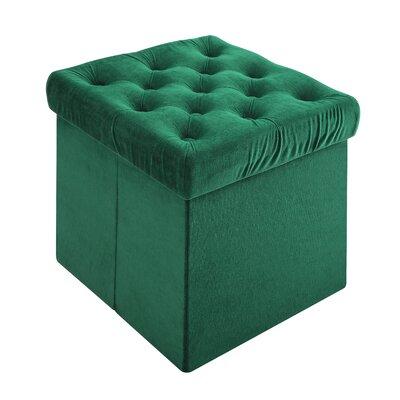 Roberto Storage Ottoman Upholstery: Green