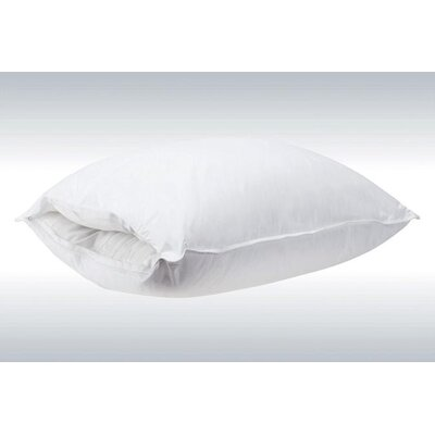Removable Interchangeable Core Polyfill Pillow Size: European