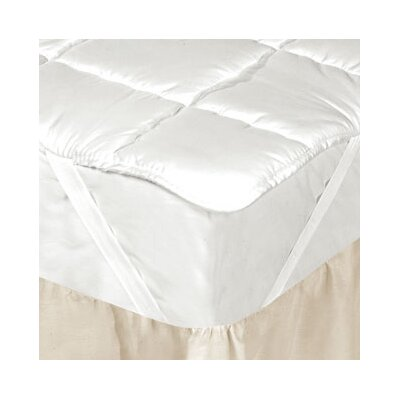 Silk Filled Mattress Pad Size: Queen