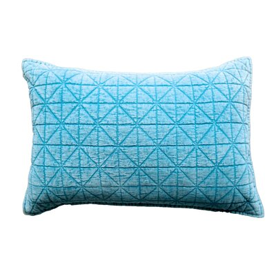 Bungalow Lane Lumbar Pillow Color: Duck Egg