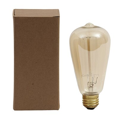Collected Notions 40 W Incandescent Light Bulb