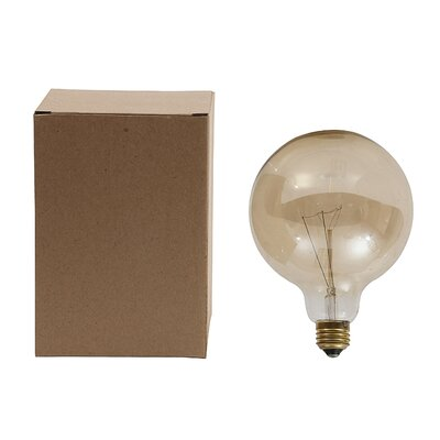 Collected Notions 40 W E26/Medium Incandescent Light Bulb