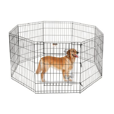 Exercise Dog Pen Size: Large (30 H x 24 W x 3 D)