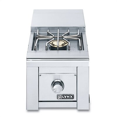 Built-In Professional Side Burner Burner Size: Double, Fuel Type: Liquid Propane