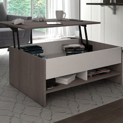 Small Space Storage Coffee Table with Lift Top Finish: Dark Gray/White