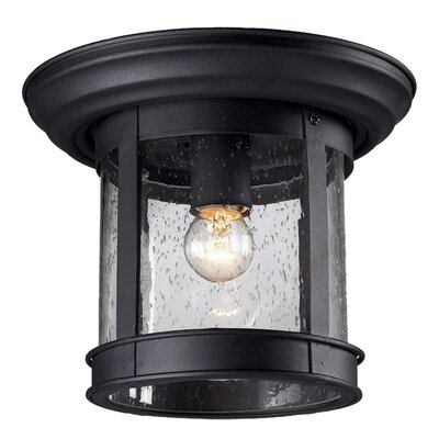 1-Light Flush Mount Finish: Black, Shade Type: Clear Seedy