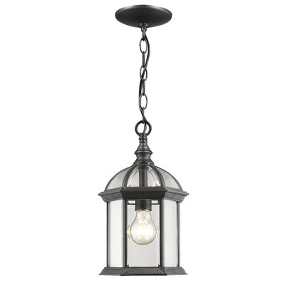Bunker Hill Outdoor 1-Light Lantern Pendant Finish: Black