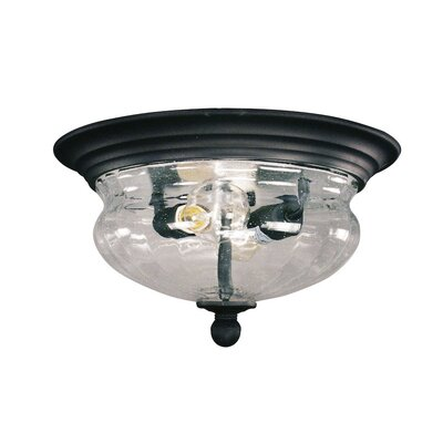 Dyal 2-Light Flush Mount