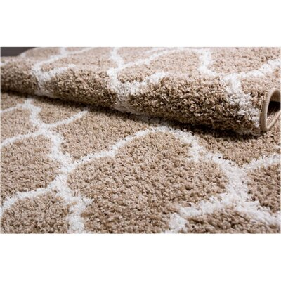 Synergy Beige/White Area Rug Rug Size: Rectangle 52 x 72