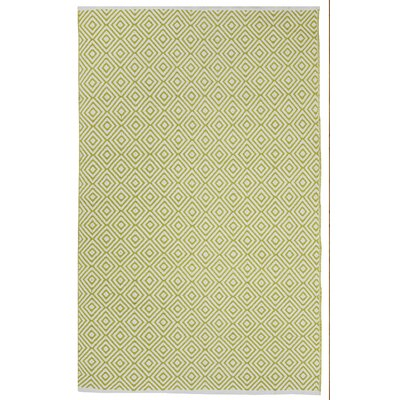 Criswell Hand Woven Cotton Green Area Rug Rug Size: 6 x 9