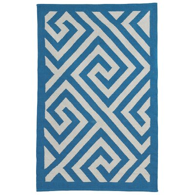 Metro Broadway Hand Woven Cotton Blue/White Area Rug Rug Size: 5 x 8