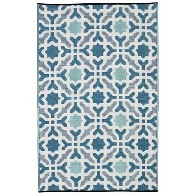 Martina Hand Woven Blue Indoor/Outdoor Area Rug Rug Size: Rectangle 6 x 9