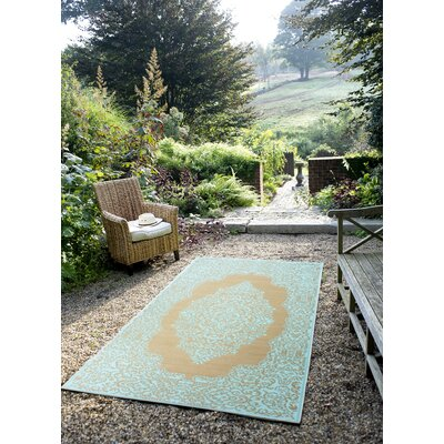 World Istanbul Fair Aqua & Warm Taupe Indoor/Outdoor Area Rug Rug Size: 4 x 6