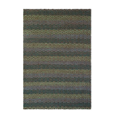 Heartland Hand-Woven Green/Brown Area Rug Rug Size: Rectangle 8 x 10