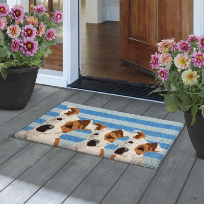 Furry Friends Door Mat