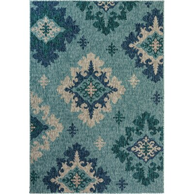 Goldfield Damask Turquoise Indoor/Outdoor Area Rug Size: Rectangle 4 x 57