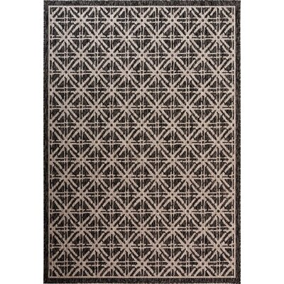 Louise Cambridge Diamond Brown Indoor/Outdoor Area Rug Size: Rectangle 52 x 76