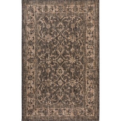 Haddenham Brown Indoor/Outdoor Area Rug Size: Rectangle 79 x 109