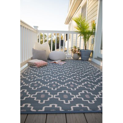 Duddy Gray Indoor/Outdoor Area Rug