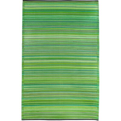 Raub Hand-Woven Green Indoor/Outdoor Area Rug Rug Size: Rectangle 4 x 6