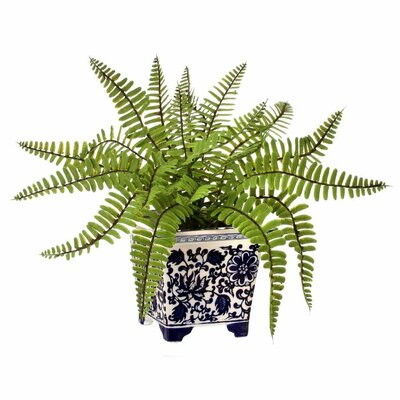 Plastic Ladder in Ming Ceramic Container Fern Floral Arrangement in Pot