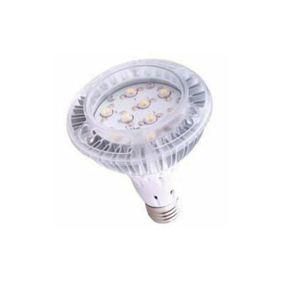 60W Halogen Equivalent Light Bulb Color: Warm White