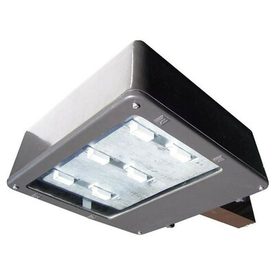 300W Equivalent Flood Light Color: Warm White