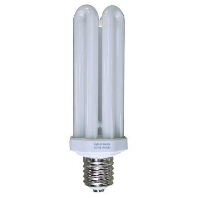 Fluorescent Light Bulb Wattage: 65W