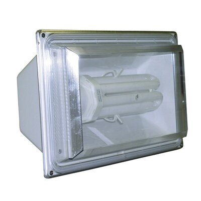 65 Watt 6500K Fluorescent Flood Light in White
