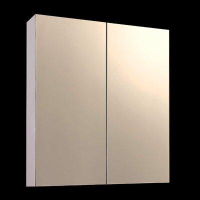 "Damarion 24"" x 36"" Surface Mount Frameless Medicine Cabinet"