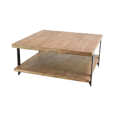 Stephene Modern Wood and Iron 2-Tiered Square Coffee Table with Magazine Rack
