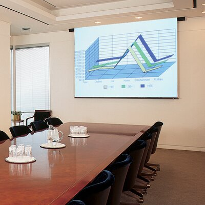 """Matte White Electric Projector Screen Viewing Area: 60"""" H X 60"""" W"""