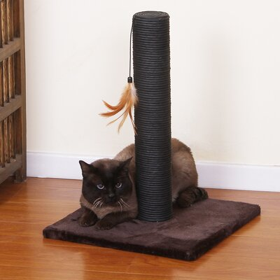 Cinch Scratching Post