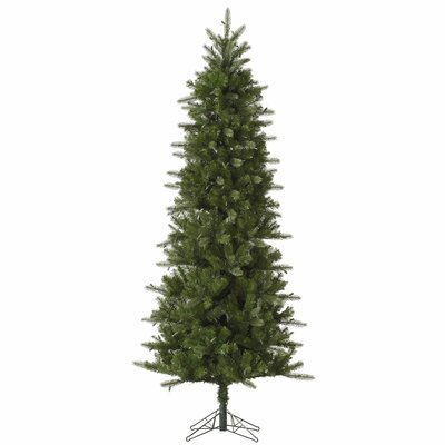 Carolina Pencil 12' Green Spruce Artificial Christmas Tree with Unlit