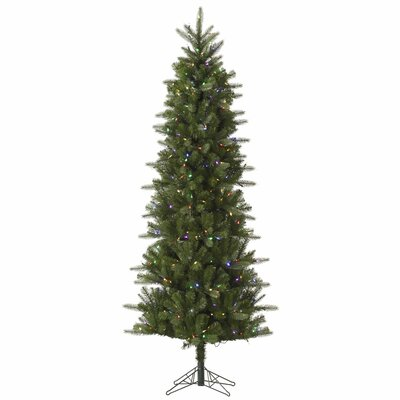 Vickerman Carolina Pencil 5.5' Green Spruce Artificial Christmas Tree with 250 LED Multi-Colored Lights