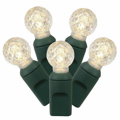 EC 100 LED Light Set Color: Warm White X4G9101PBG