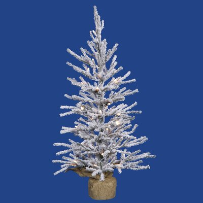 2.5' Flocked Angel Pine Artificial Christmas Tree with Clear Lights
