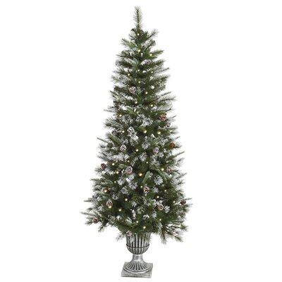 6.5' Frosted Country Pine Cone Potted Artificial Christmas Tree with Clear Light