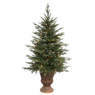 4' Potted Norwood Fir Artificial Christmas Tree with Clear Lights