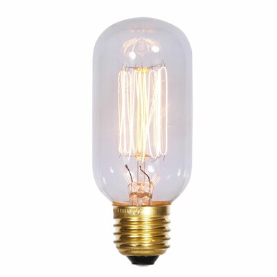 40W E26 Incandescent Edison Light Bulb