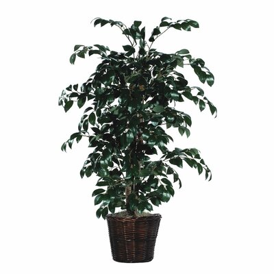 Three Posts Artificial Potted Natural Sakaki Ficus Tree in Basket